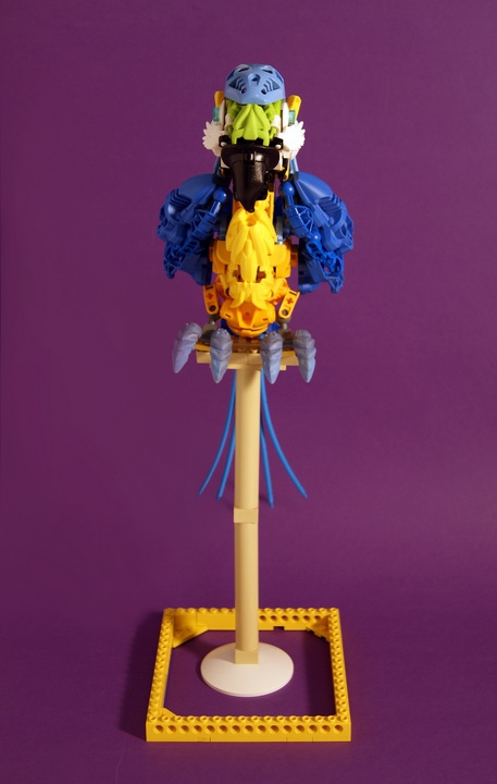 LEGO MOC - 16x16: Animals - Blue-and-yellow Macaw