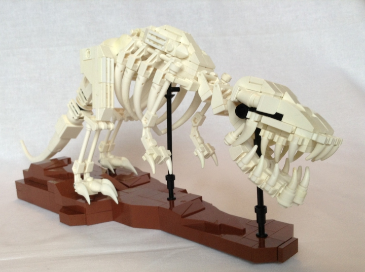LEGO MOC - Jurassic World - A new exhibit in the city museum: Tyrannosaurus` forelimbs are too tiny in comparison with other such predators. In Horner`s opinion they were absolutely unable to capture prey.  Tyrannosaurus` teeth could crush bones, so the lizard could get maximum sustenance from the remains of dead animals.
